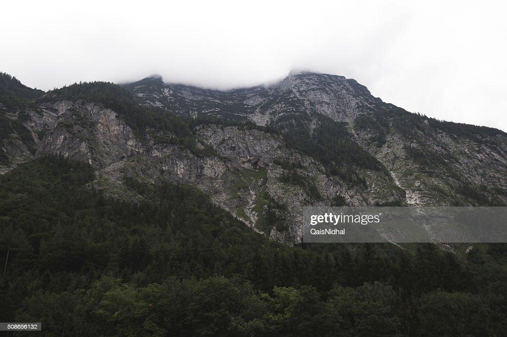 green mountains : Stock Photo