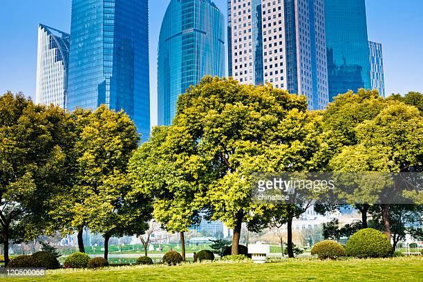 Grüne der Stadt