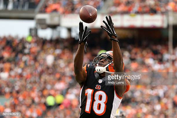 J Green of the Cincinnati Bengals attempts to catch a pass during the third quarter of the game against the Pittsburgh Steelers at Paul Brown Stadium...