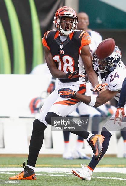 J Green of the Cincinnati Bengals battles for the ball with Champ Bailey of the Denver Broncos during their game at Paul Brown Stadium on November 4...