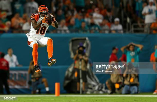 J Green of the Cincinnati Bengals makes a catch during a game against the Miami Dolphins at Sun Life Stadium on October 31 2013 in Miami Gardens...