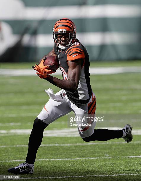 J Green of the Cincinnati Bengals runs with the ball against the New York Jets during their game at MetLife Stadium on September 11 2016 in East...