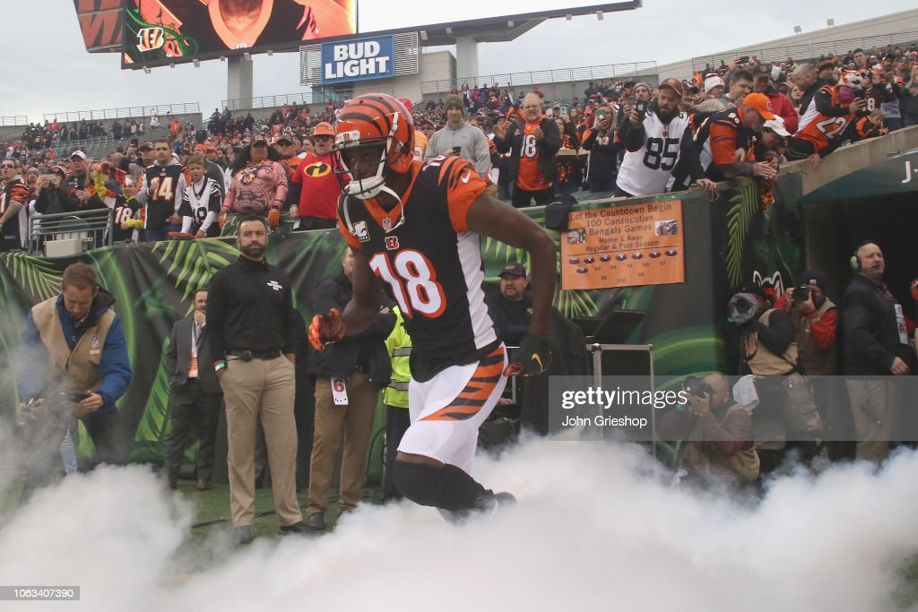Tampa Bay Buccaneers v Cincinnati Bengals : News Photo