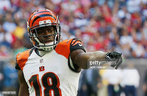 J Green of the Cincinnati Bengals waits for a play in the second half of their game against the Houston Texans at NRG Stadium on November 23 2014 in...