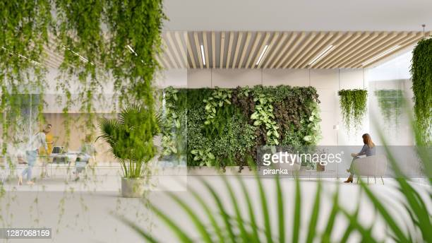 green office - architecture stock pictures, royalty-free photos & images