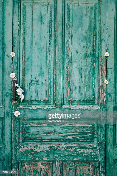 Green old wooden door decorated with white blossoms