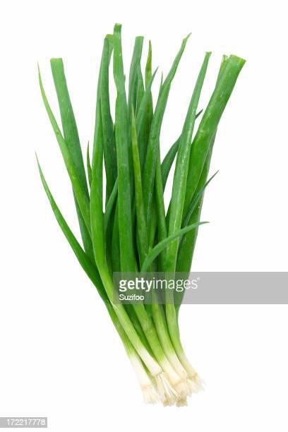Cebollas verde