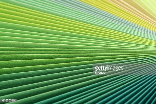Green Paper Pages Stack Radial Gradient
