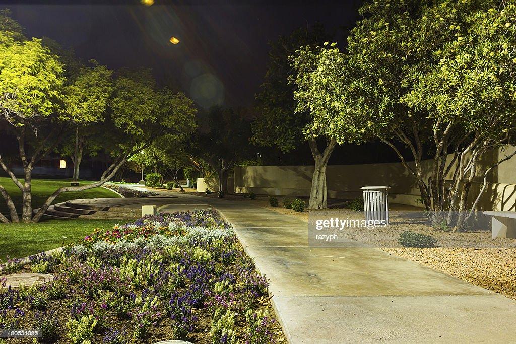 Green park di notte : Foto stock