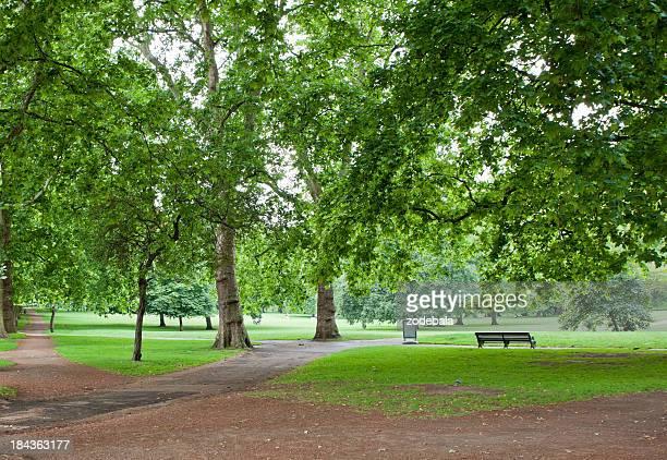 Green Park in Summer, London