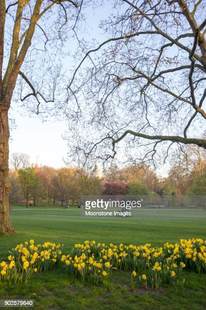 Green Park in Westminster, London