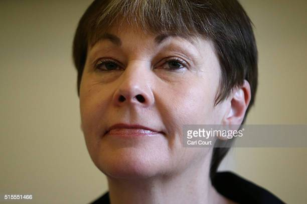 Green Party Member of Parliament for Brighton Pavilion Caroline Lucas attends the launch of her party's EU campaign on March 14 2016 in London...