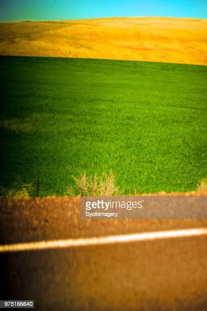 Green pasture along rural highway