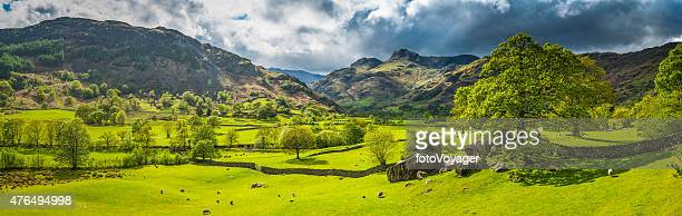 Green pasture idyllic mountain valley panorama Langdale Lake District Cumbria