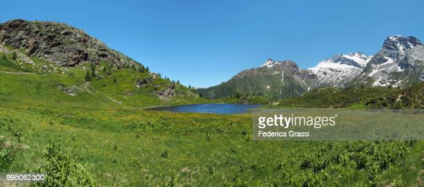 Green Pastures And Alpine Lake Hopschusee At Simplon Pass