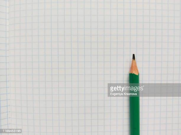 green pencil rests on a white checkered exercise book without notes - schulheft stock-fotos und bilder