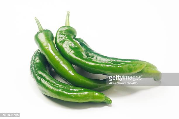 green pepper - green chili pepper stock pictures, royalty-free photos & images