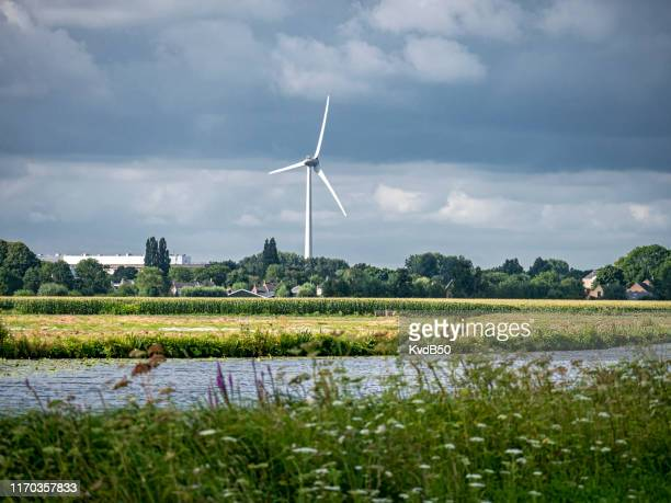 green power in the green heart - south holland stock pictures, royalty-free photos & images