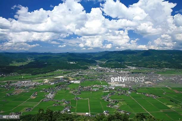 green rice field - 大分県 ストックフォトと画像