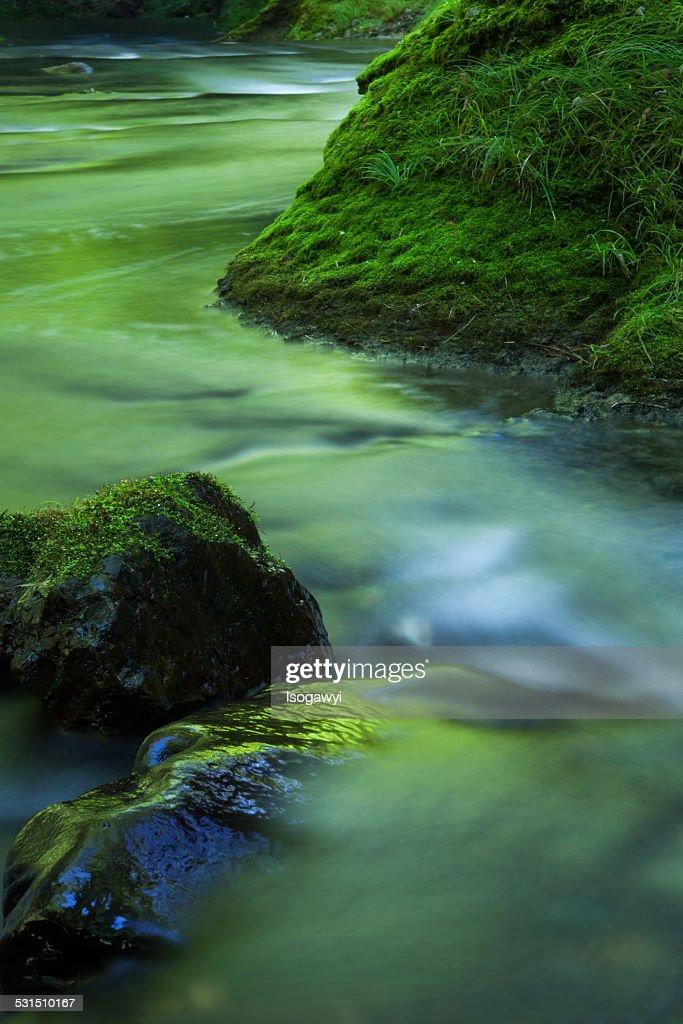 Green River : ストックフォト