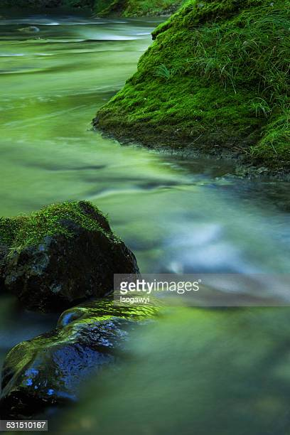 green river - isogawyi stock pictures, royalty-free photos & images