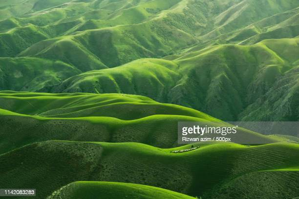 green rolling hills china - rolling landscape stock pictures, royalty-free photos & images