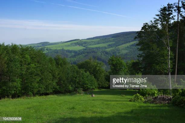 green rolling hills of bílé karpaty - may stock pictures, royalty-free photos & images