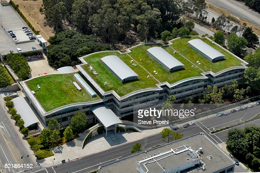 Green Roof With Solar Panels On Gap Corporate Headquarters