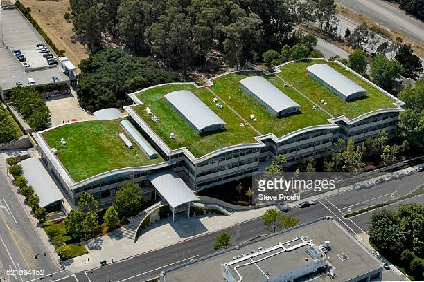 Green roof with solar panels on Gap corporate headquarters building. Google Youtube offices are also located in this complex.