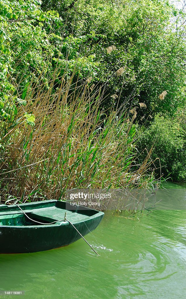 Green rowing boat on a green river : Stock Photo