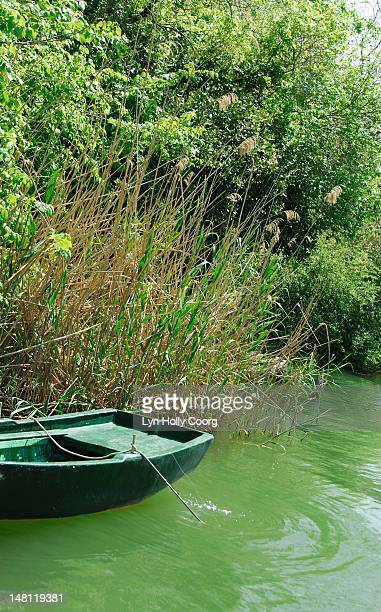 green rowing boat on a green river - lyn holly coorg stock-fotos und bilder