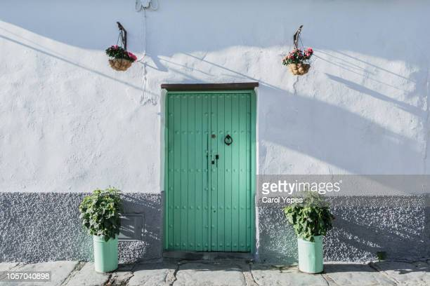 green rustic door with potted plants in seville,spain - porta imagens e fotografias de stock
