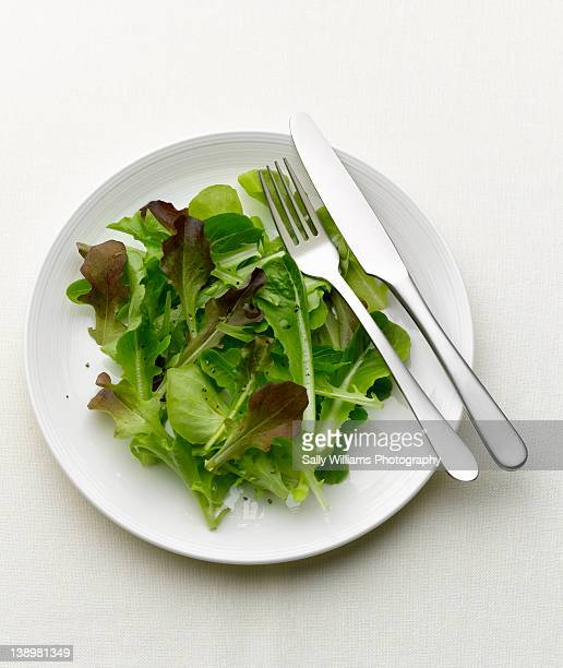 green salad on a white plate - green salad stock pictures, royalty-free photos & images