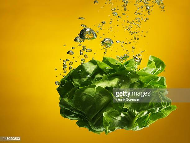 green salad splashed into water