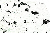 green schist mineral microscopy slide under