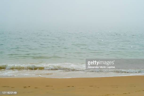 green sea waves on a yellow beach in spain in a foggy day - alexandre coste foto e immagini stock