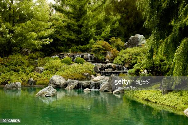 green serenity - japanese garden stock photos and pictures