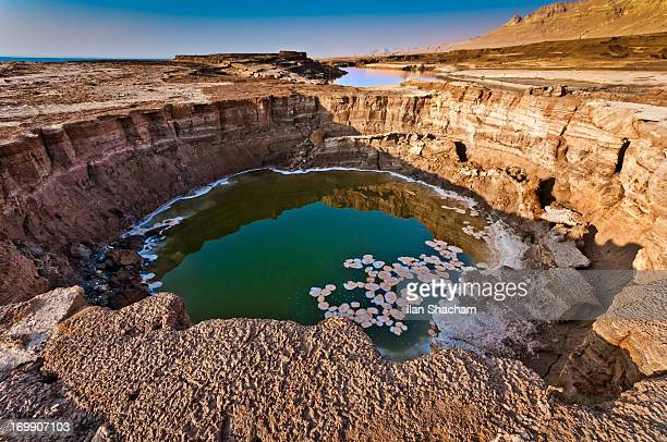 green sinkhole at the dead sea - sinkhole stock photos and pictures