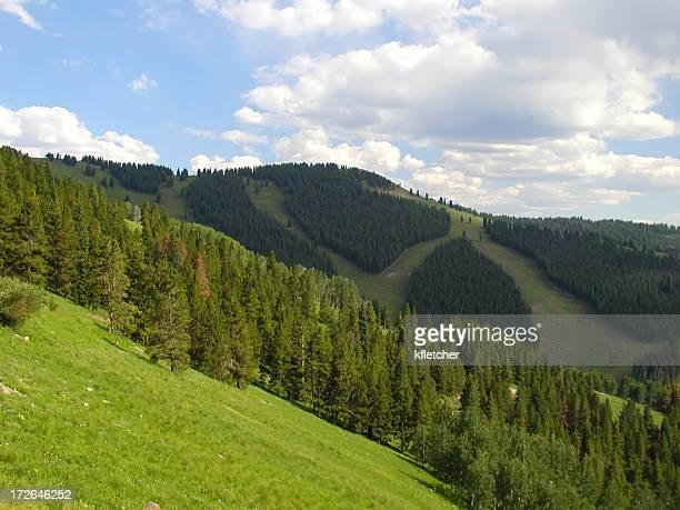 verde ski slopes - vail colorado fotografías e imágenes de stock