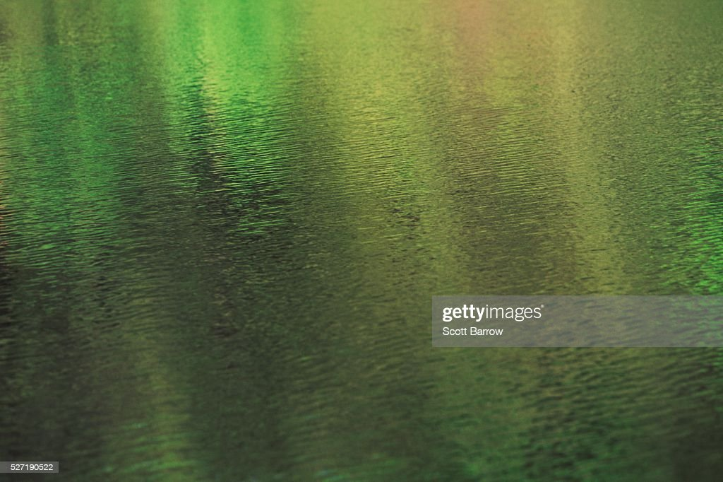 Green sparkly water : Photo