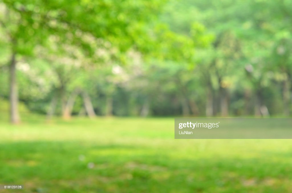 outdoor backgrounds. Outdoor Backgrounds. Green Spring Defocused Abstract Background  Backgrounds H E