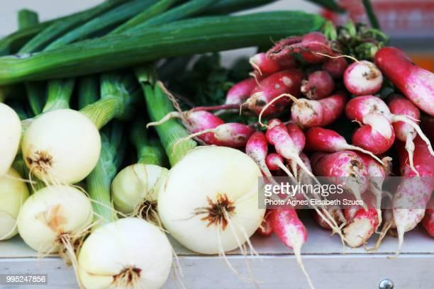 green spring onions  & raddish raphanus sativus - ラインラント=プファルツ州 ストックフォトと画像