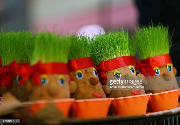Green sprouts are sold in samll clay containers at a market in Tehran in Tajrish Square a special items to celebrate Nowruz on March 19 2014 in...
