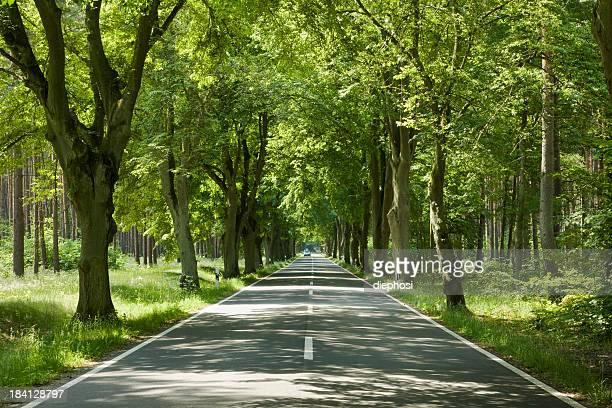 green street,