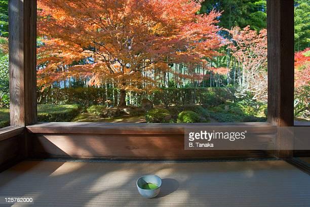 Green Tea at Kyoto's Hosen-in Temple