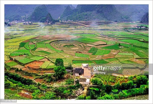green texture in china - province du guizhou photos et images de collection