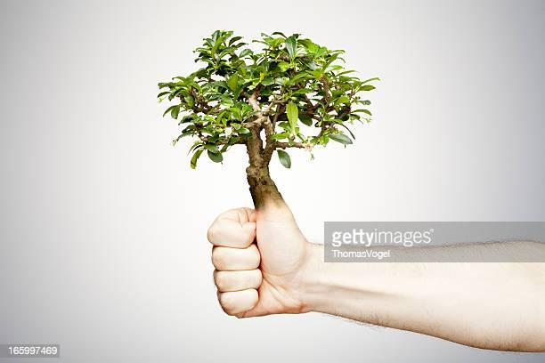 main verte - jardinier humour photos et images de collection