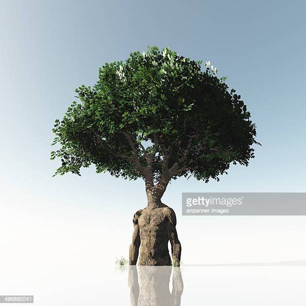 A green tree with a trunk forming a human torso