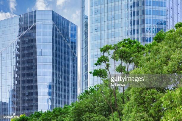 green tree with urban architecture,detail shot of business building - fensterfront stock-fotos und bilder
