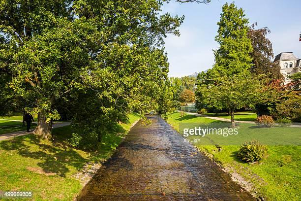 green trees baden-baden germany - baden baden stock-fotos und bilder